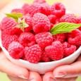 Zmeura conţine puţine calorii (38 kcal/100g) şi este foarte bogată în calciu, fier, fosfor şi vitamine (mai ales vitamina C, dar şi A, B). Pigmenţii roşii au un efect similar […]
