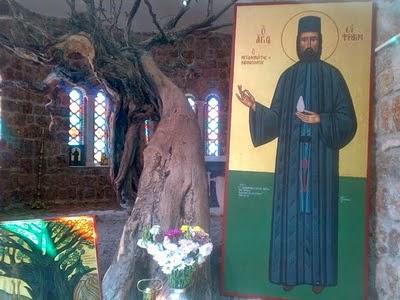 icoana-sfantul-efrem-cel-nou-grecia-paraclis-copac