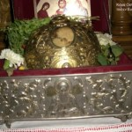 manastirea-cuviosul-david-