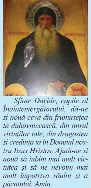 manastirea-cuviosul-david-osios-9