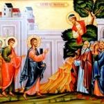 Duminica a 32-a după Rusalii- a lui Zaheu (video)