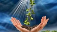 Blândeţea este cel dintâi rod al bunătăţii şi iubirii aproapelui, o stare echilibrată şi liniştită a sufletului. Cel blând are grijă să nu supere pe nimeni şi să nu […]