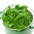 Ingrediente: – 0,5 kg urzici proaspete -200 g nuci macinate -3-4 cepe -2-3 linguri de ulei -sare, piper negru Cum pregatim: 1. Urzicile se spala bine (in 5-6 ape), se […]