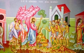 12. Intrând Iisus într-un sat, L-au întâmpinat zece leproşi care stăteau departe, 13. Şi care au ridicat glasul şi au zis: Iisuse, Învăţătorule, fie-Ţi milă de noi! 14.Şi văzându-i, […]