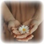 Să nu călcăm în picioare curăția și bucuria Tainei Căsătoriei