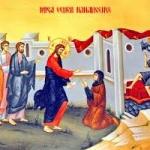 Duminica a 17-a după Rusalii (a Cananeencei)