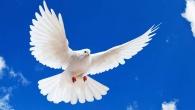 """Cine este Duhul Sfant, pe careSimbolul de credintail numeste """"Domnul, de-viata-Facatorul"""", chemandu-ne sa-L cinstim pe El impreuna (adica, in egalitate) cu Tatal si cu Fiul? A vorbi despreDuhul Sfant, […]"""