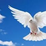 Din sfaturile Părintelui Sofronie: Cum să avem Duhul în noi şi să-l păstrăm?