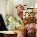 """""""Cine nu înțelege Sfânta Taină a Euharistiei nu a înțeles ce este Biserica, ce înseamnă a fi creștin"""""""