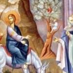 Intrarea Domnului in Ierusalim prevesteste Invierea Sa  (audio)