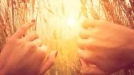 """După ce am cerut mai întâi""""unitatea credinței""""și""""împărtășirea Sfântului Duh"""", ne încredințăm lui Dumnezeu""""pe noi înșine și unii pe alții și toată viața noastră"""". Darce este unitatea credinței?Zice Scriptura:""""Bărbatulîndoielnic […]"""